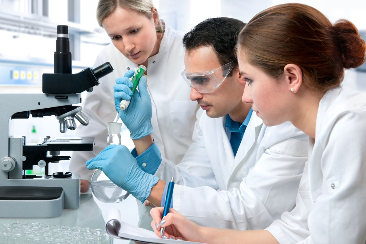 How to Study Biology to Get a A-Plus?