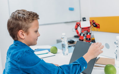 Minecraft Games As Learning: Study Skills for Primary School Students